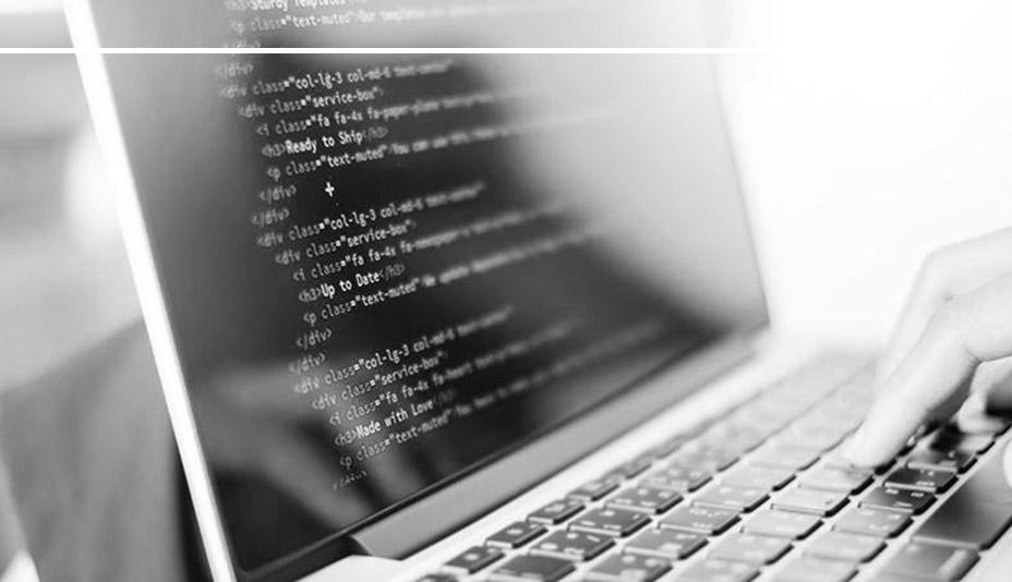 Tela de notebook apresentando linguagem de programação