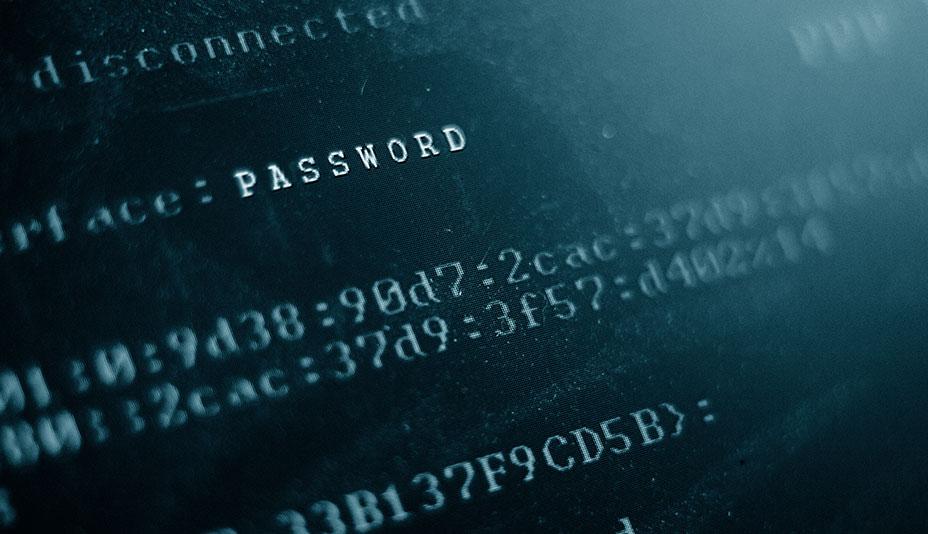 Zoom de tela focando em uma linguagem de códigos onde se pode ler a palavra password.