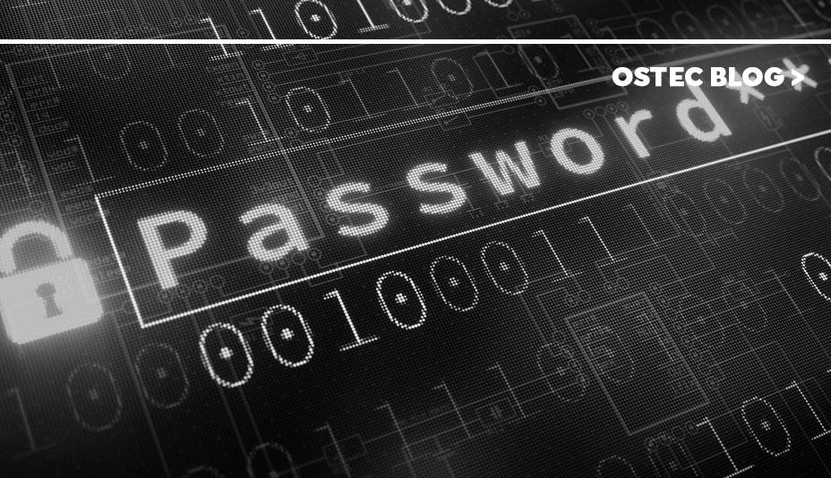 """Captura de tela onde se pode ler """"password"""""""